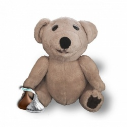 Store: Small Talking Ted E. Bare -He's cuddly at 13cm!